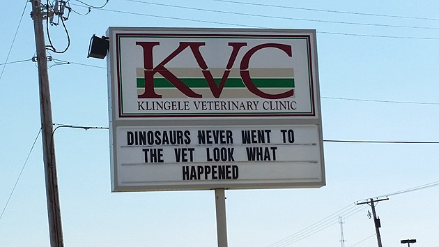 Klingele Veterinary Clinic